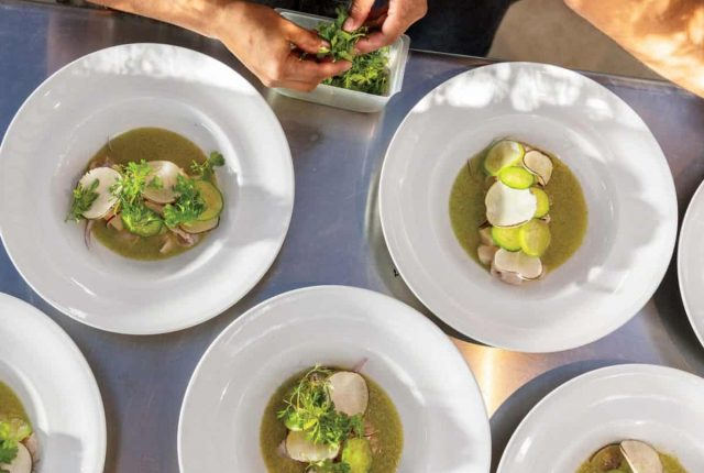 Page #: 88 / Chilled Shrimp and Scallops in Spicy Tomatillo Sauce