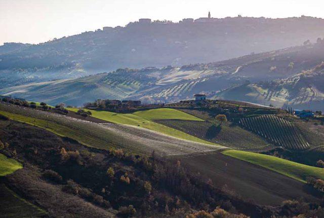 Abruzzo Agricola Cirelli